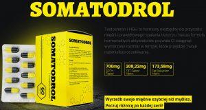 somatodrol-opis