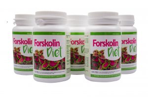 Forskolin-Diet-sposob-dzialania