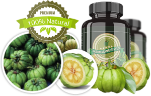 Garcinia-Cambogia-Veda-charakterystyka-co-to-jest