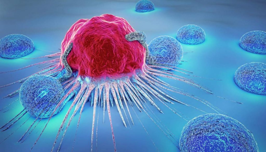 Choroby genetyczne i nowotworowe