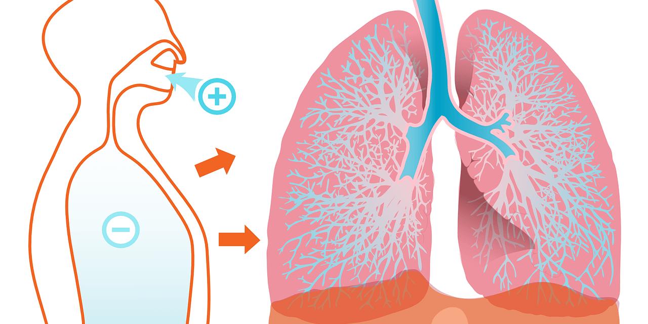 Alergiczne zapalenie pęcherzyków płucnych - podstawowe informacje o chorobie