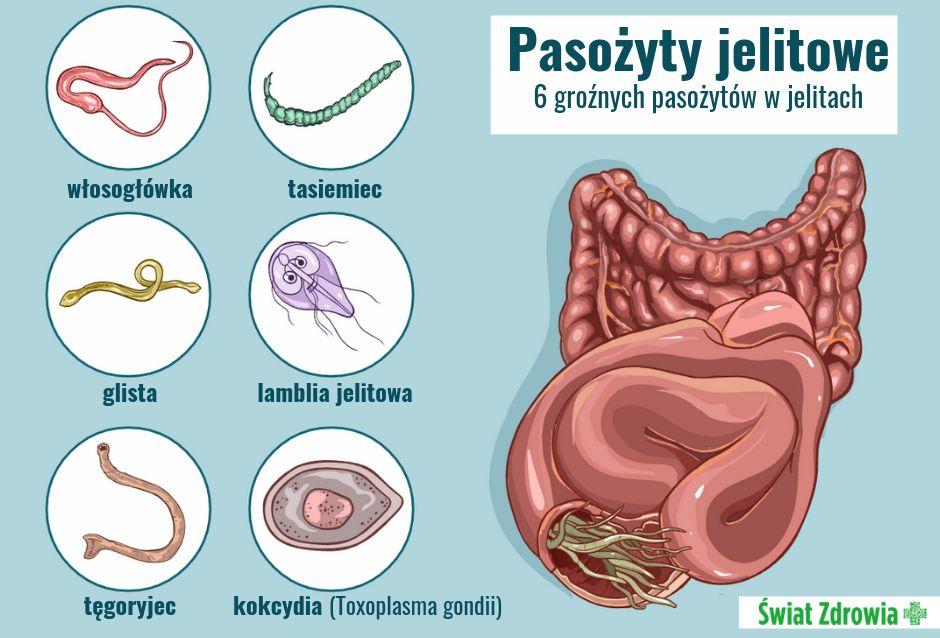Jak leczy się choroby wywoływane przez pasożyty jelitowe?
