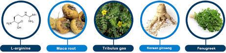 Jakie są składniki w Titanodrol?